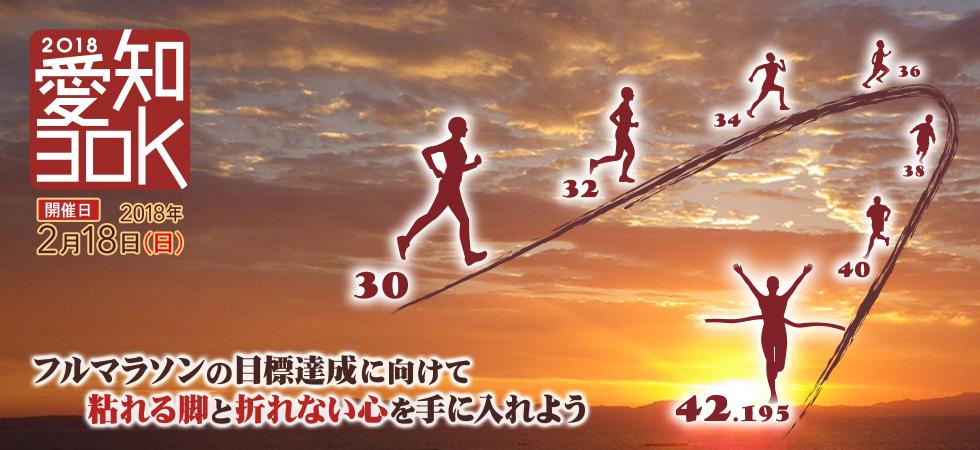 2018年2月18日(日)に開催される、愛知30Kでフルマラソンの目標達成に向けて脚をつくろう